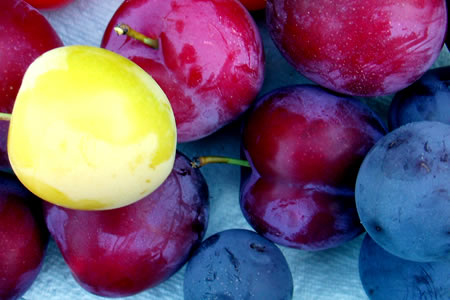 july plums
