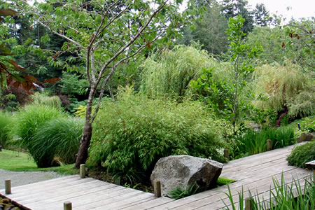 a japanese garden on mayne island